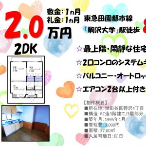 2DK「駒沢大学」駅徒歩8分