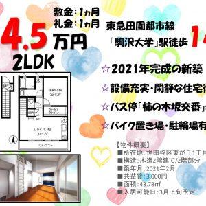 1LDK「駒沢大学」駅徒歩14分
